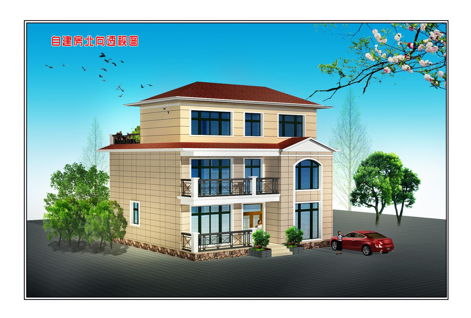 农村5层半自建房外观设计图展示