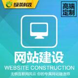 网站建设/各类大型门户及中高端网站开发运营