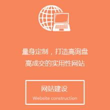 威客服务:[60296] 网站建设