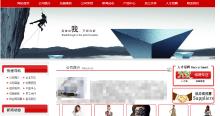 品牌宣传展示型网站开发