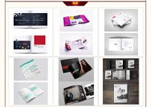 画册/宣传单设计