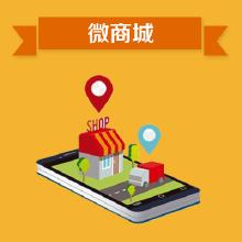 威客服务:[88589] 【大蓝鲸】微信开发-微商城定制开发
