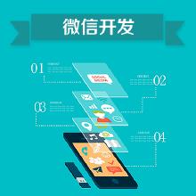 威客服务:[88559] 【大蓝鲸】微信开发-小程序开发微信开发(微商城/微官网/微网站)