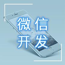 威客服务:[91086] 微信开发