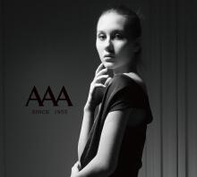英国AAA皮鞋 品牌策划VI设计