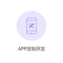 威客服务:[79466] APP定制开发