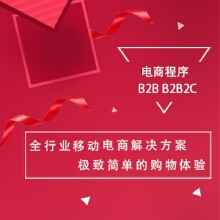 电商网站 B2B B2B2C