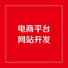 威客服务:[113387] 电商网站/商城网站/购物网站开发