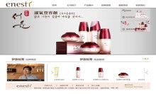 安瑞科技 伊奈丝蒂(青岛)化妆品有限公司 网站建设