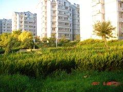 现代住宅小区规划设计 庭园景观设计发展现状