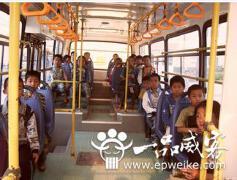 小学校车VI设计要求 小学校车Vi设计方法和技巧