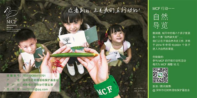 深圳红树林湿地保护基金会(MCF)的广告推广