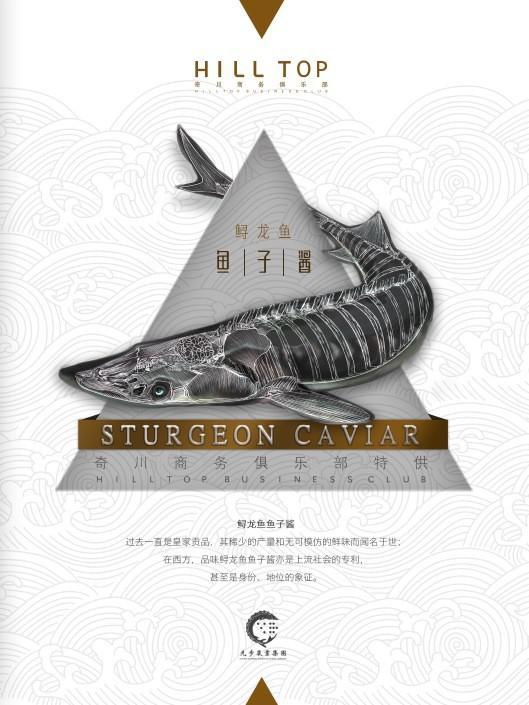 奇川HILLTOP会所鲟龙鱼子酱包装设计