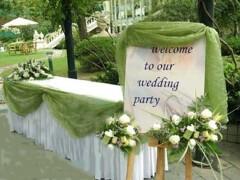 给喜欢户外婚礼的80后新人的草坪婚礼的策划方案