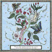 在树叶下与蝶共舞的花仙子作品文案分享