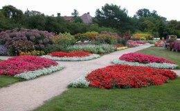 园林景观的花境设计特点优势