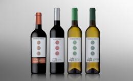 独特创新的酒瓶设计,酒瓶设计图片欣赏