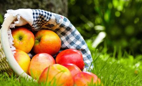 水果订购app开发如何走好发展之路