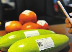 农产品流通商业街小程序开发