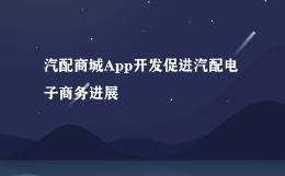 汽配商城App开发促进汽配电子商务进展